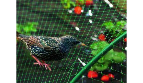 Сетка для защиты от птиц